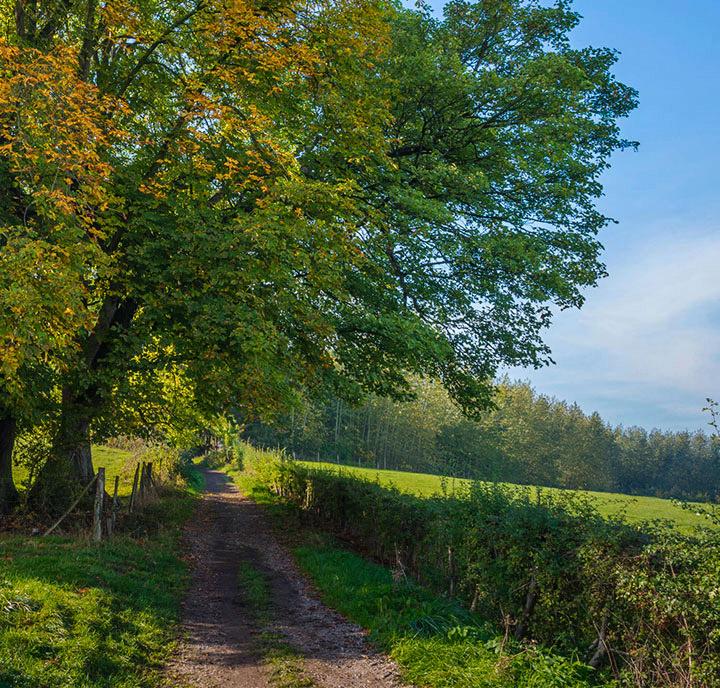 Prachtig gelegen in de Vlaamse Ardennen.